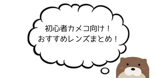 【初心者カメコ向け】おすすめのレンズまとめ!【イベント・個別で変わる】