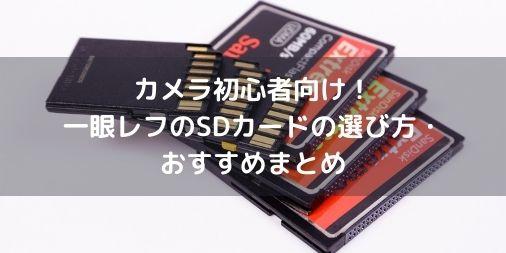 【カメラ初心者向け】一眼レフ用のメモリーカードの選び方・おすすめまとめ【違いを解説】